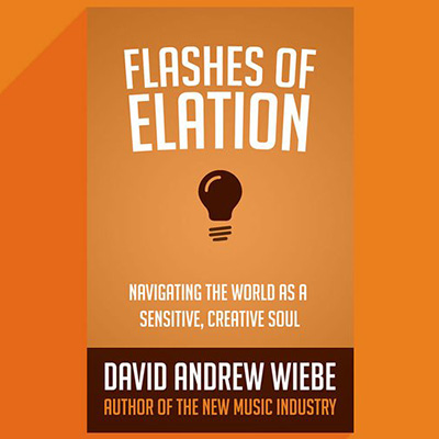 Flashes of Elation: Navigating the World as a Sensitive, Creative Soul book